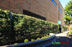 1499288160Whole-Foods-Chicago-Green-Wall